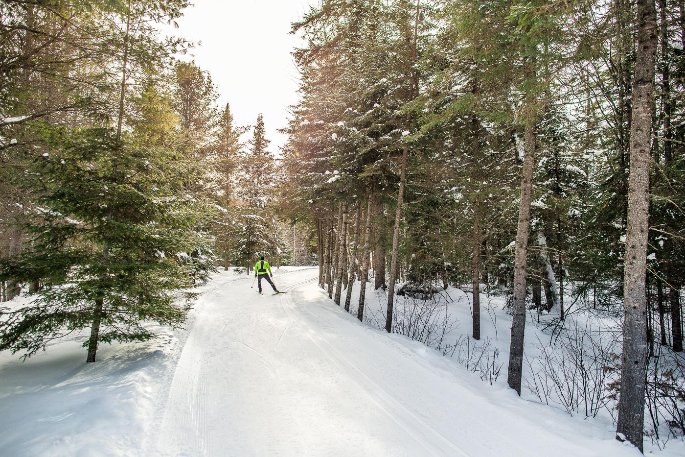 photo commercial ski de fond swix canada performance foret hiver