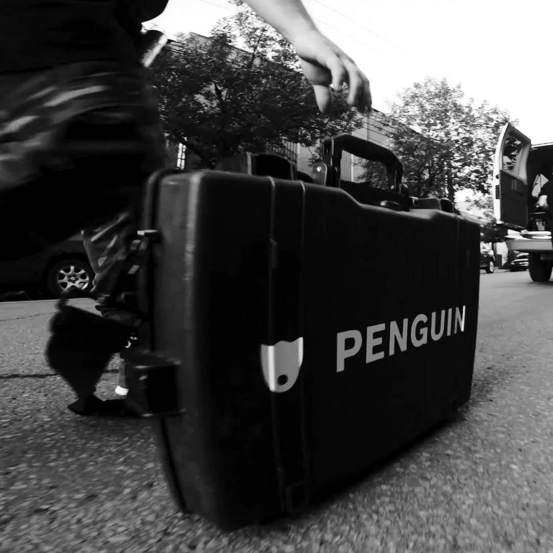 Valise Penguin Image De Marque Blog Post Demo